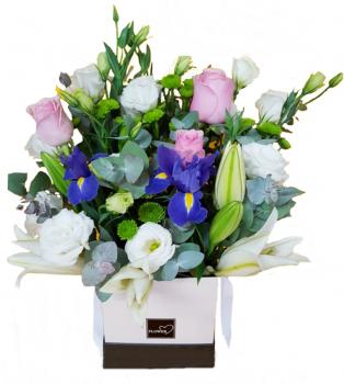 אירוסים ב- flower box 220 שח