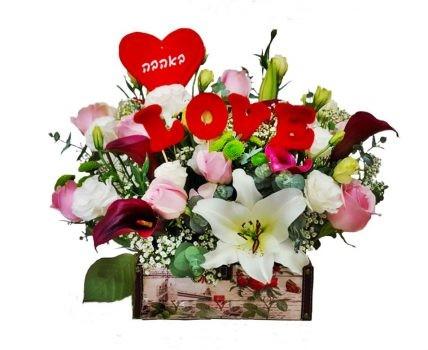 תיבת אהבה מדהימה 369 שח
